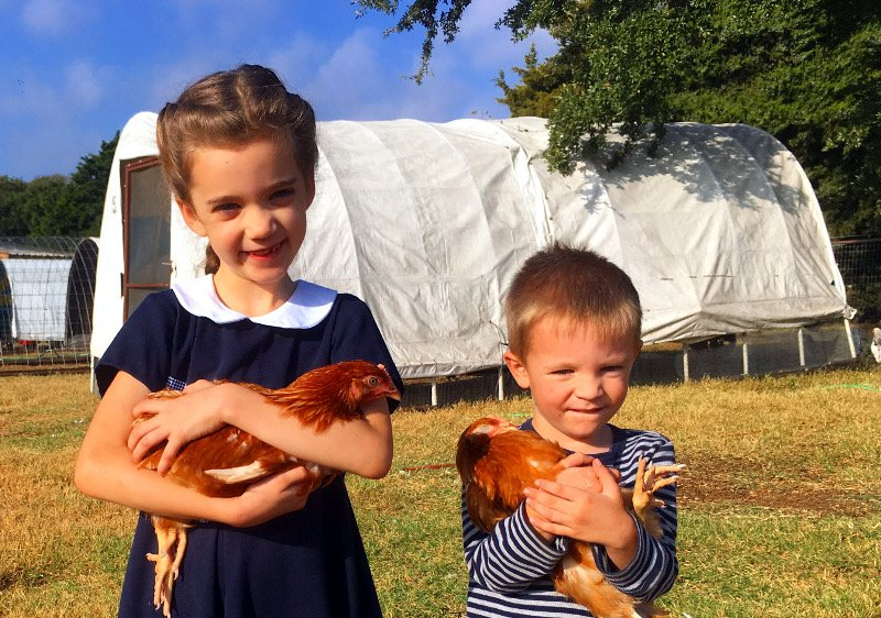 Children with Started Pullets