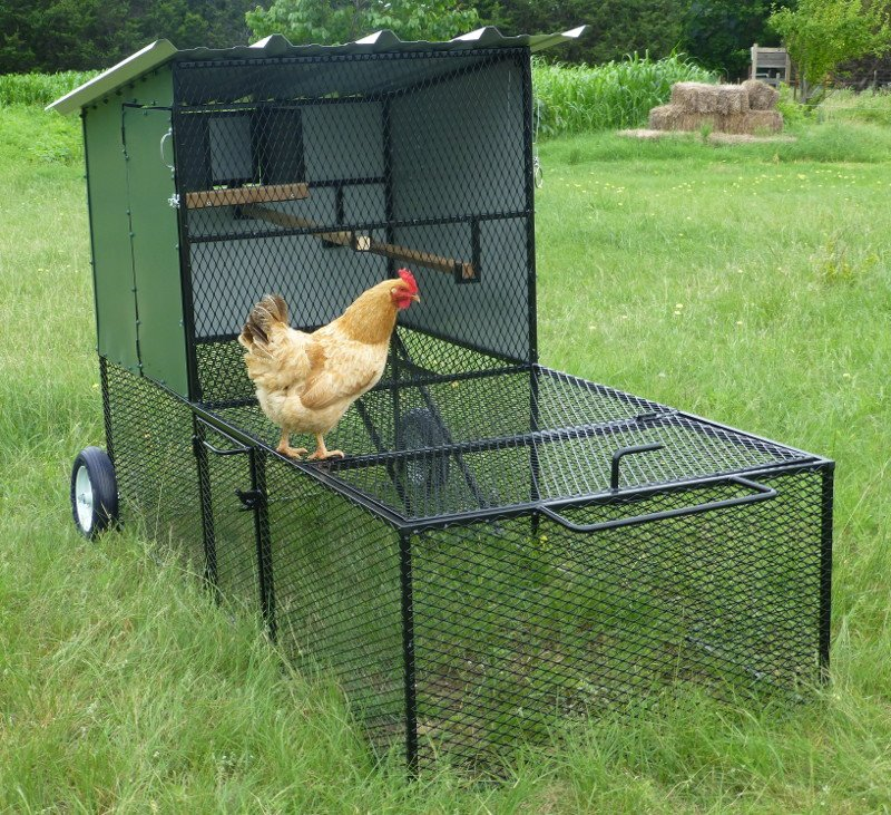 Types of Chicken Coops - Claborn Farms