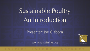 Sustainable Poultry An Introduction